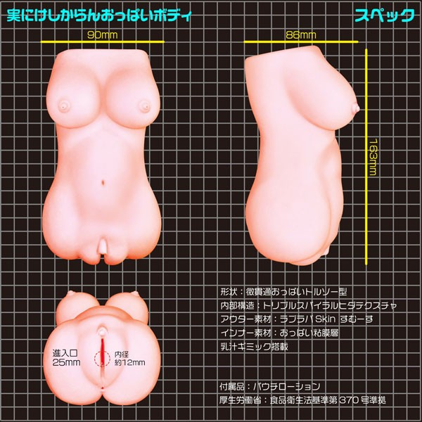 Disgraceful Oppai Body