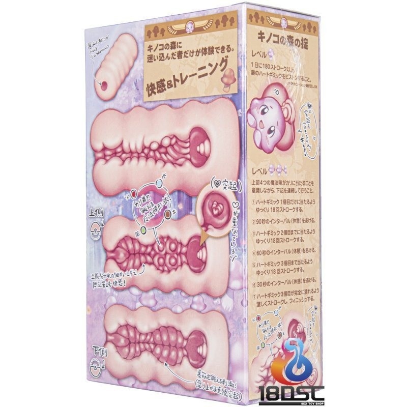 Toysheart R-18 onahole masturbation training box